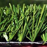 Comprar grama sintética importada